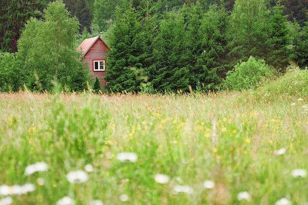 Letni krajobraz z zieloną łąką i drewnianym domem ukrytym w lesie iglastym