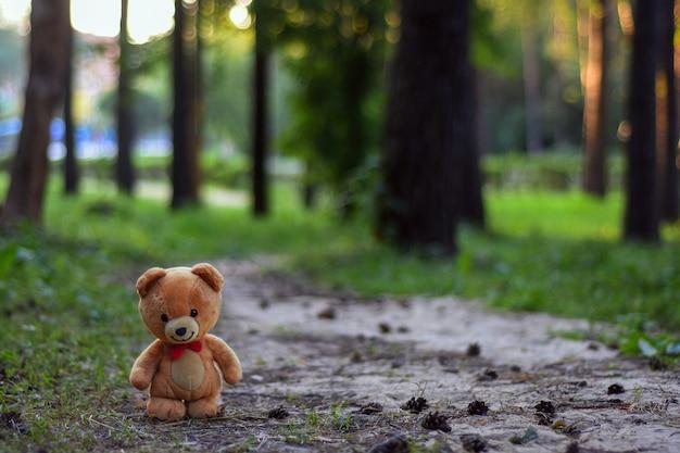 Letni las tło z misiem koncepcja dzieciństwa