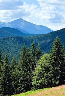 Letni mglisty górski krajobraz z jodłowym lasem z przodu, goverla mount za