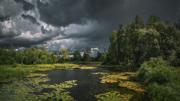 Letni piorunujący krajobraz z rzeką, wodnymi kwiatami, lasem i ciemnymi, dramatycznymi chmurami