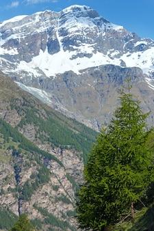 Letni płaskowyż alp (szwajcaria, niedaleko zermatt)