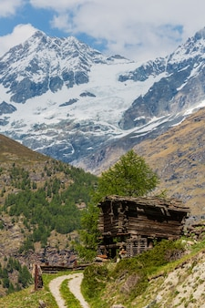 Letni płaskowyż alp z drewnianą stodołą (szwajcaria, niedaleko zermatt)