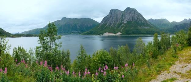 Letni pochmurny widok na fiord z kwiatami z przodu (norwegia)