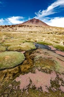 Letni szeroki górski krajobraz boliwijski
