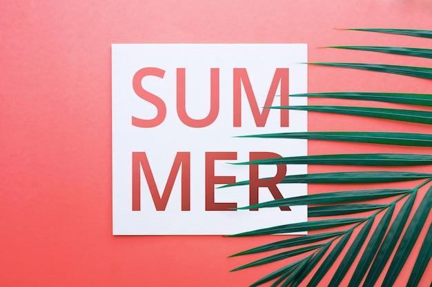 Letni tekst z tropikalnymi liśćmi w pastelowych kolorach tła