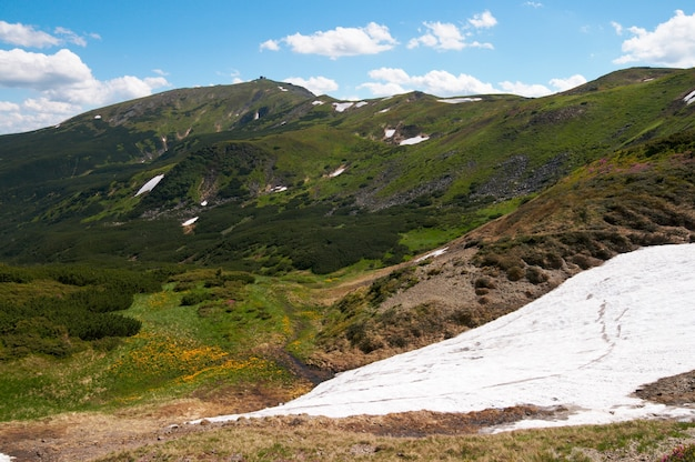 Letni widok na góry ze śniegiem na zboczu góry