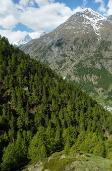 Letni widok na matterhorn (alpy, szwajcaria, zermatt)