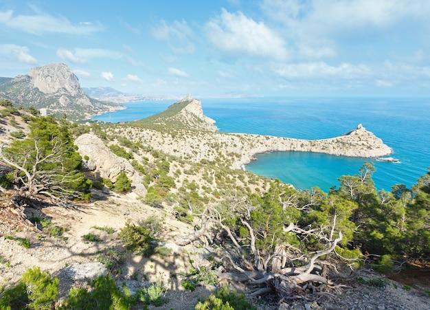 Letni widok na wybrzeże rezerwatu novyj svit