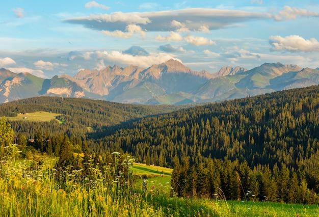 Letni wieczór na skraju górskiej wioski z kwitnącymi polami i pasmem tatr