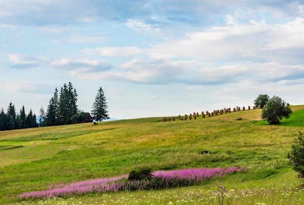 Letni wieczór na skraju górskiej wioski z różowymi i białymi kwiatami i stogami siana na wzgórzu