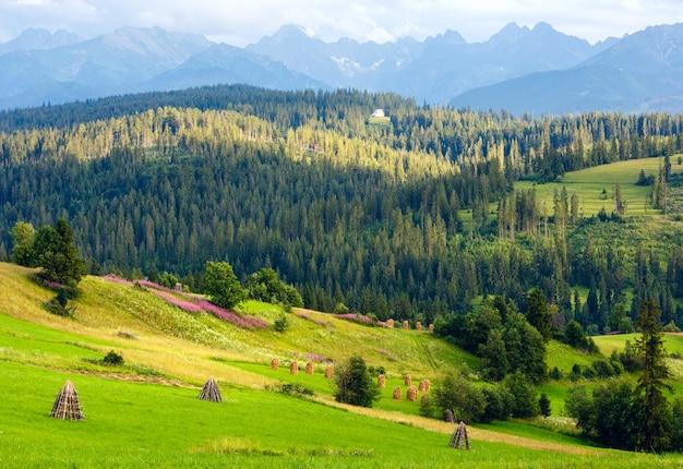 Letni wieczór na skraju górskiej wioski z różowymi kwiatami i stogami siana na wzgórzu