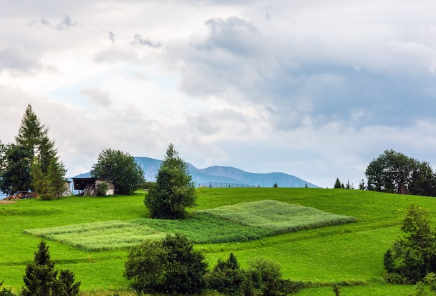 Letni wieczór obrzeża wioski górskiej (gliczarów górny, polska)