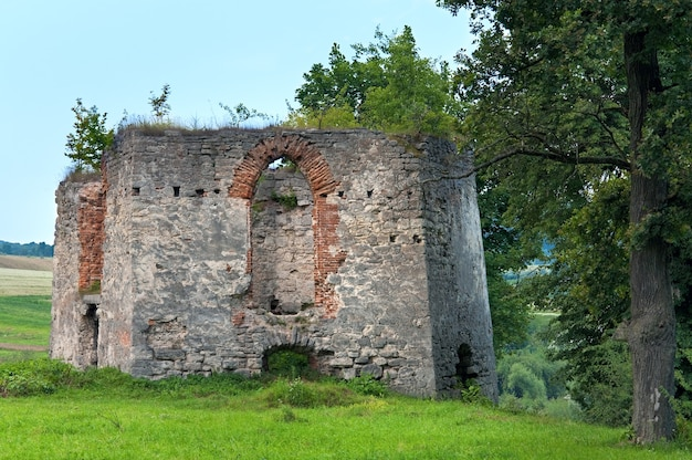 Letni wieczór widok na zniszczoną wieżę zamku svirzh (obwód lwowski, ukraina. zbudowany w xv-xvii wieku.)