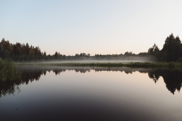 Letni wieczorny zmierzch widok na malowniczą równinę jeziora z odbiciami nieba i drzew