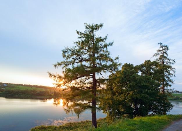 Letni zachód słońca nad jeziorem i drzewem na brzegu