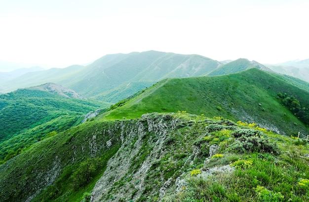 Letni zielony krajobraz górski