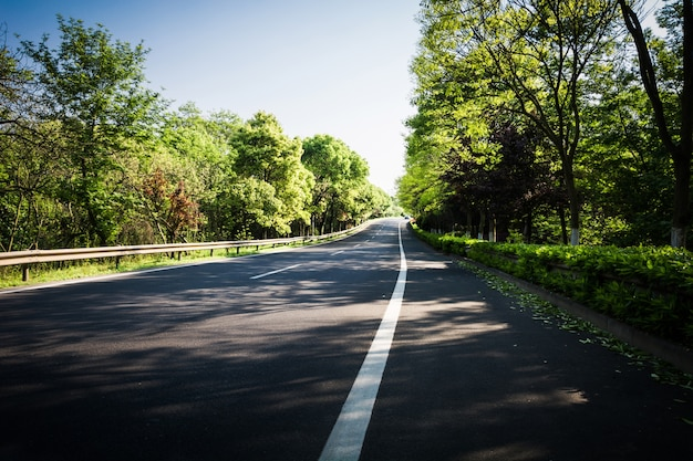 Letnia droga krajowa