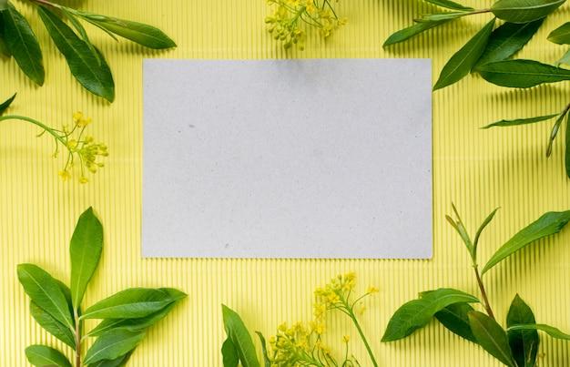 Letnia mocap z papierem