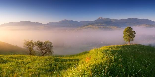 Letnia panorama z porannej mgły nad górską wioską