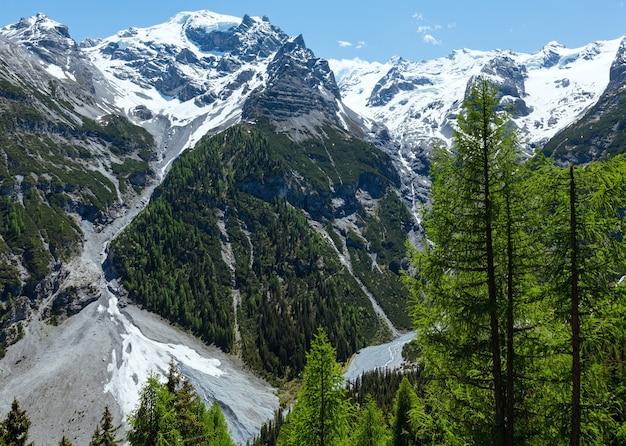 Letnia przełęcz stelvio z lasem jodłowym i śniegiem na zboczu góry (włochy)
