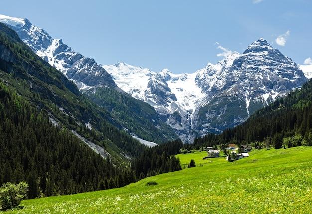 Letnia przełęcz stelvio ze śniegiem na zboczu góry i kwitnącą łąką (włochy)