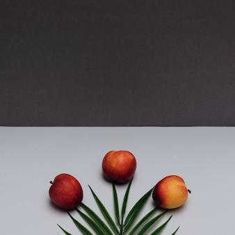 Letnia scena z nektaryną i liściem palmowym na białym i ciemnoszarym tle karta koncepcji letniej