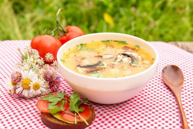 Letnia zupa grzybowa z pietruszką, grzankami, pomidorami na tle czerwonej serwetki w kratkę na świeżym powietrzu. wegetariański obiad na łonie natury.