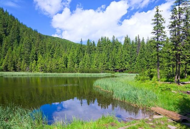 Letnie górskie jezioro marichejka i odbicie jodłowego lasu (ukraina, czarnogóra, karpaty)