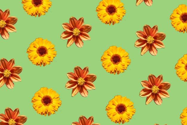 Letnie kwiaty wzór. żółty i pomarańczowy kwiat na zielonym tle. minimalna koncepcja.