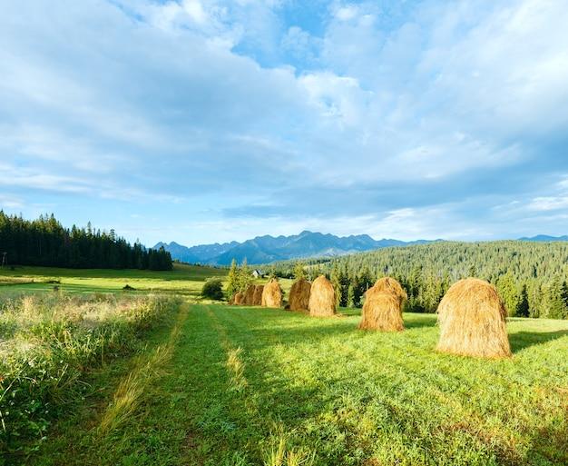 Letnie obrzeża górskiej wioski ze stogami siana i pasmem tatr za polską