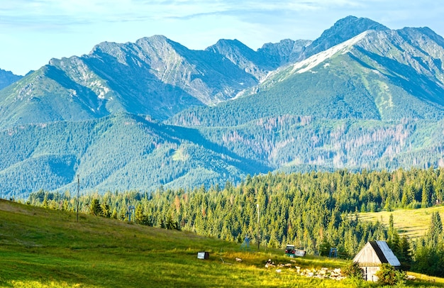 Letnie przedmieścia górskiej wioski ze stodołą i stadem owiec w pobliżu (za tatrami, polska)