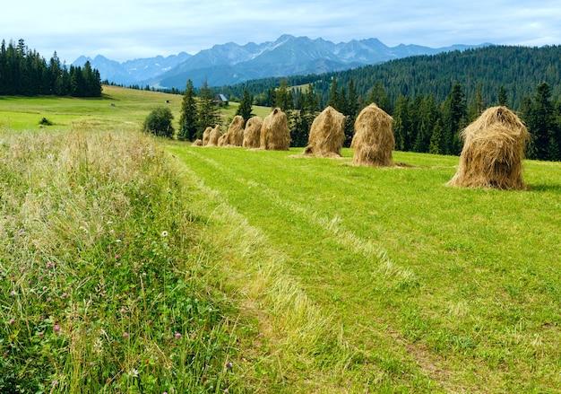 Letnie przedmieścia górskiej wioski ze stogami siana i pasmem tatr (polska)