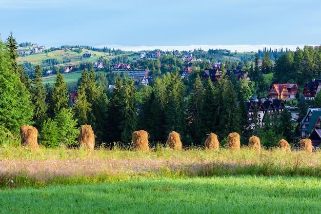 Letnie przedmieścia górskiej wioski ze stogami siana polska
