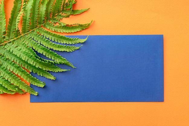 Letnie tło niebieska koperta, liść paproci, na pomarańczowym tle