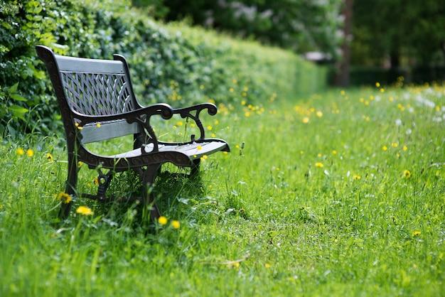 Letnie tło z drewnianą ławką w ogrodzie