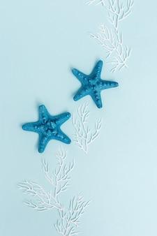 Letnie tło z kolorową gwiazdą i białym koralem na pastelowym błękicie