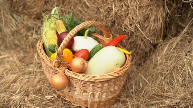 Letnie żniwa w wiklinowym koszu. świeże warzywa - kukurydza, ogórki, papryka, sałata, cukinia i cebula w koszu na sianie. piękno i bogactwo koncepcji natury.