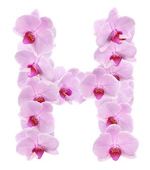 Lette h z kwiatów orchidei. na białym tle
