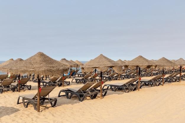 Leżaki i parasole na plaży rocha portimao