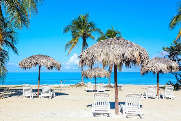 Leżaki pod parasolami na piaszczystej plaży z palmami nad morzem i niebem.