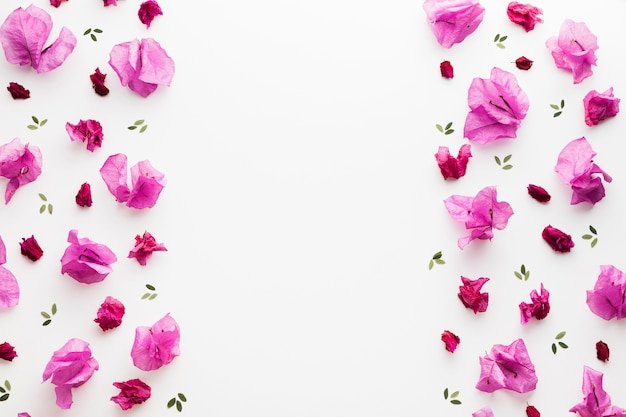 Leżał płasko kwiatowy koncepcja z miejsca kopiowania