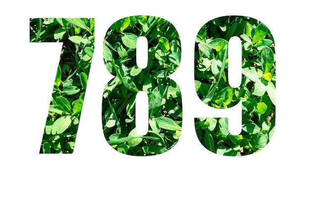 Liczby 7 8 9 z zielonej trawie na białym tle. elementy do twojego projektu.