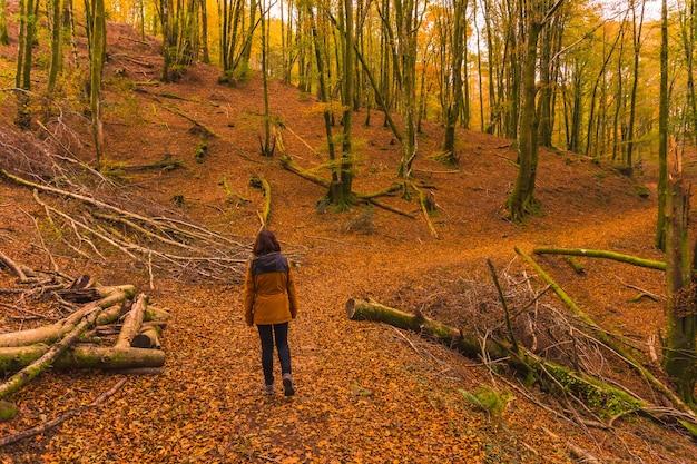 Lifestyle, młoda brunetka w żółtej kurtce spacerująca jesienią leśną ścieżką. las artikutza w san sebastin, gipuzkoa, kraj basków. hiszpania