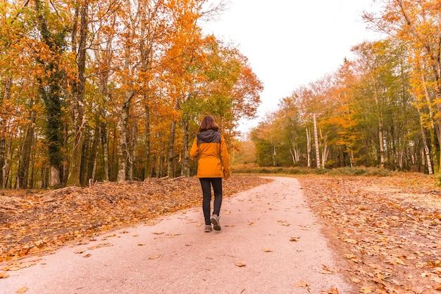 Lifestyle, młoda brunetka w żółtej kurtce spacerująca po lesie jesienią. las artikutza w san sebastin, gipuzkoa, kraj basków. hiszpania