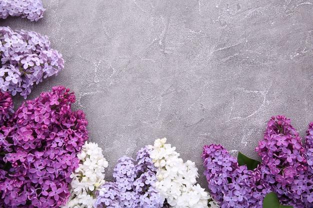 Lila kwiat gałąź na szarym tło betonie z copyspace
