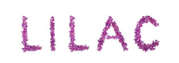Liliowy tekst wykonany z fioletowych liliowych pedałów.