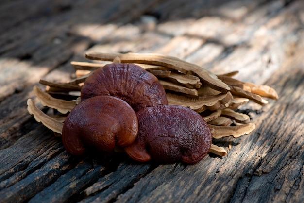 Lingzhi mushroom umieścić na starym drewnianym stole.