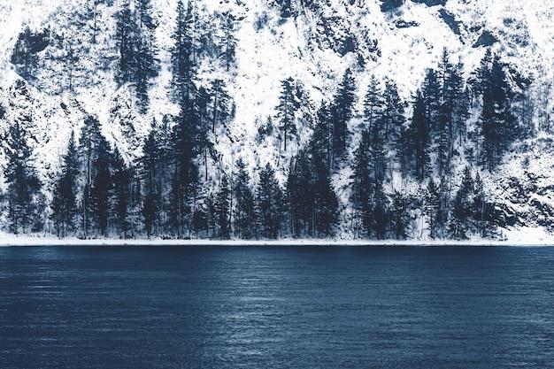 Linia brzegowa rzeki w zimie, zimowy las i ciemnoniebieska rzeka.
