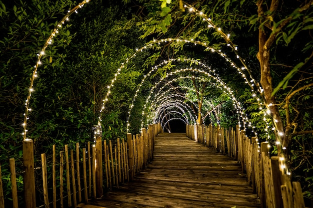 Linia świetlna zawieszona jest na dekoracjach drzewiastych na koncepcie jaskini na drewnianym tarasie, spacerując po ciemnej drodze.