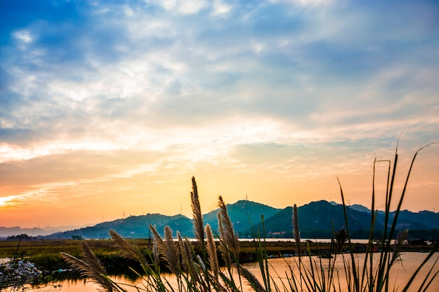 Linia wybrzeża nowej funlandii o zachodzie słońca